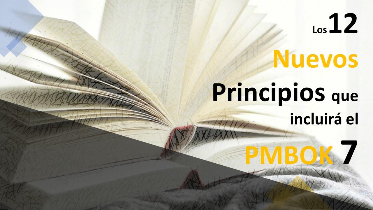 12NUEVOS PRINCIPIOS EN EL PMBOK