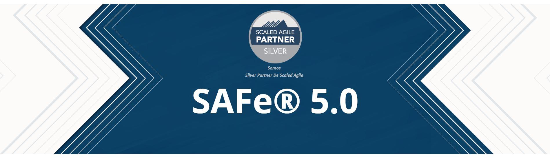 SAFE 5.0 SILVER